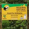 46_Ranita_Dorada_Amphibian_Reserve