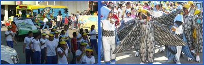 Collage_Festival_migratorias_San_Vicente