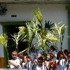 Inicio_palm
