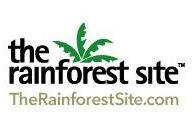 the_rainforest_site