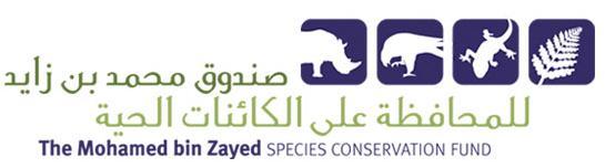 Mohamed_Bin_Zayed