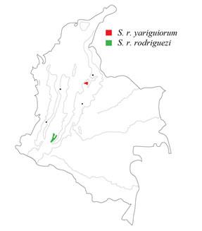 mapa_tapaculo