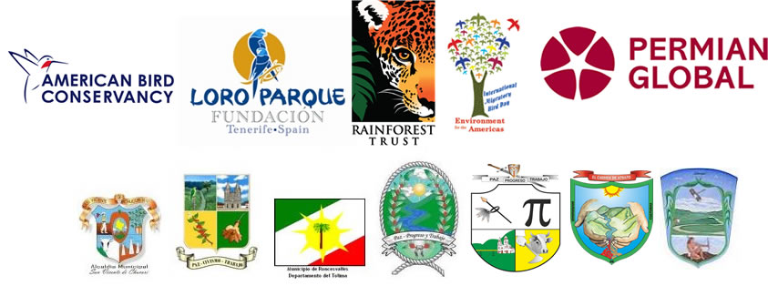 logos_festivales
