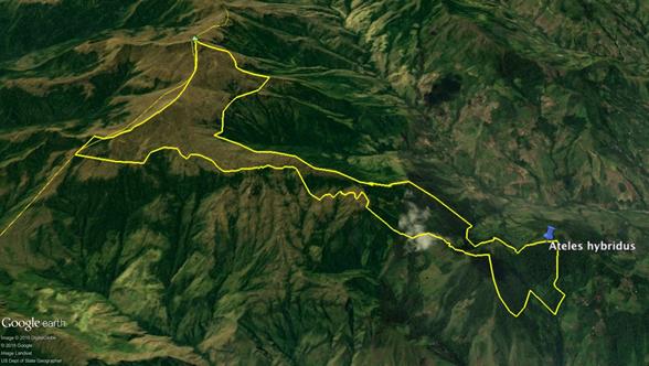 mapa-2-rna-completa