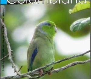 Cons_Colombiana25