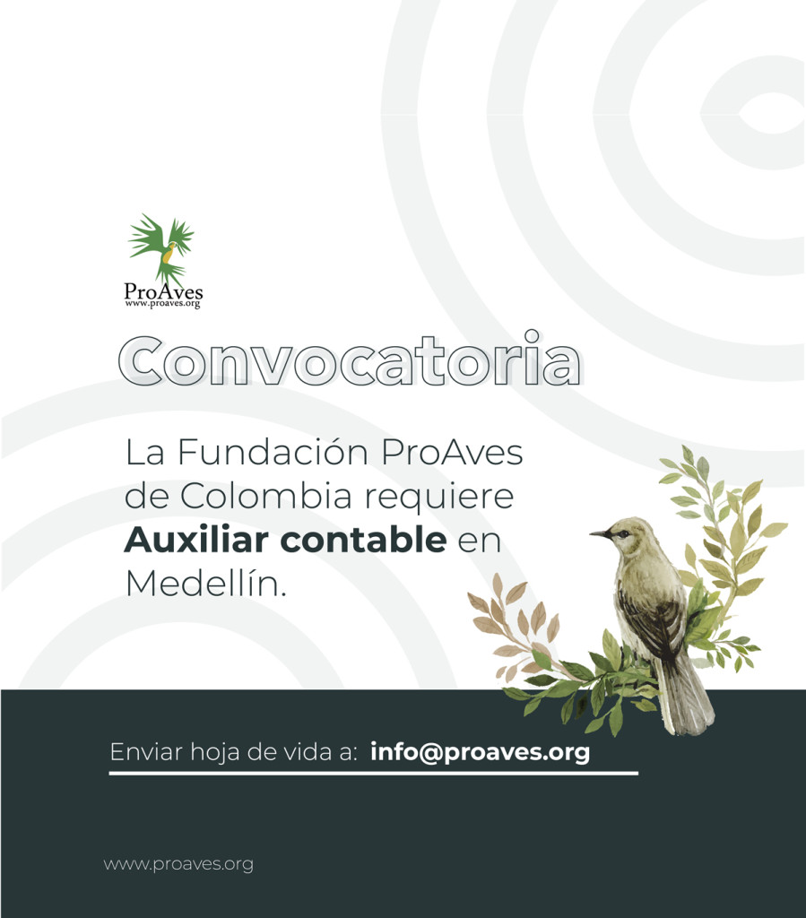 convocatoria-proaves2_Mesa-de-trabajo-1