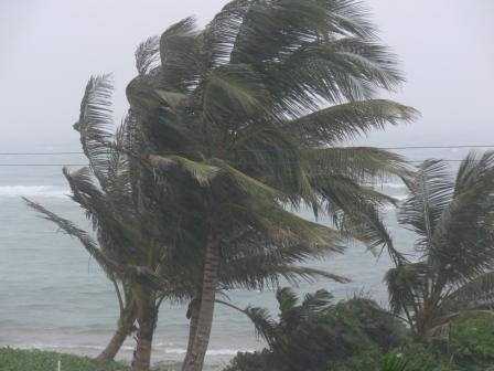 El mal tiempo y los vientos fuertes nos obligaron a realizar otras actividades que fueron igualmente enriquecedoras.