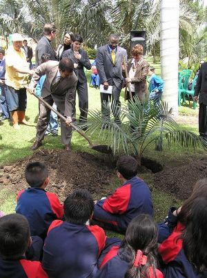 Farbio Arjona, Director Ejecutivo de Conservación Internacional, sembrando Palma de Cera en el Jardín Botánico de Bogotá